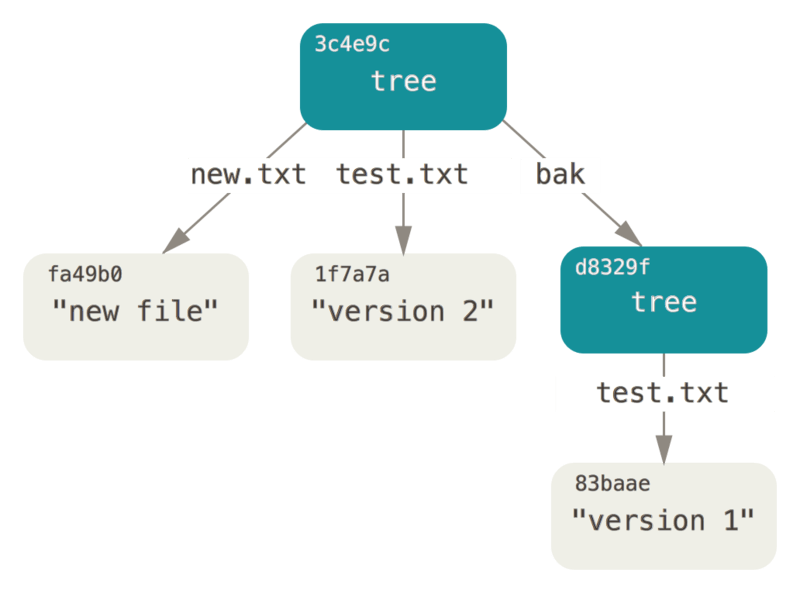 The content structure of your current Git data